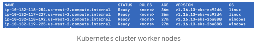 Kubernetes cluster worker nodes