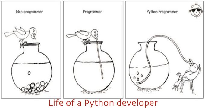 life of a Python developer